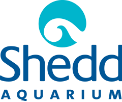 Shedd Aquarium Military Discount